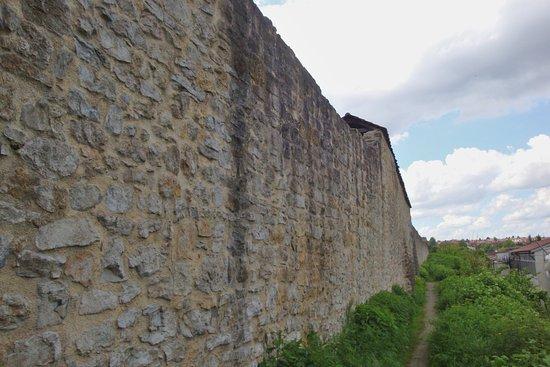 Marbach am Neckar, Germany: Die nördliche Stadtmauer in Marbach
