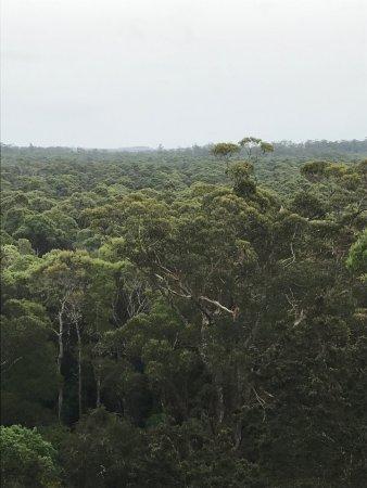 Smithton, Australia: photo1.jpg