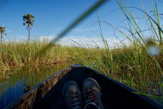 Gunn's Camp : Water safari via traditional Mokoro Canoe