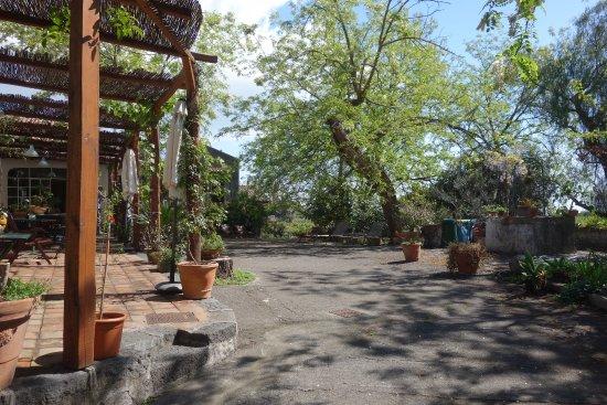 Santa Venerina, Italia: La terrasse commune et l'accès au jardin