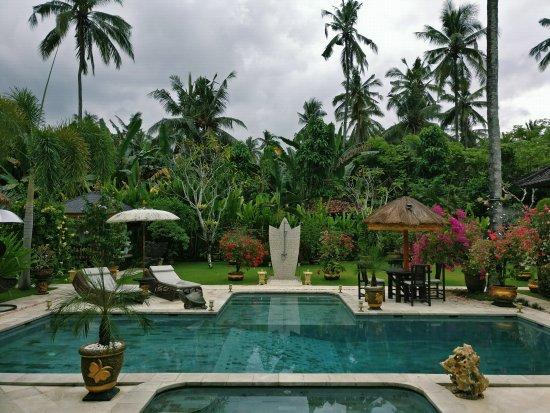 Villa Gusmania Tripadvisor