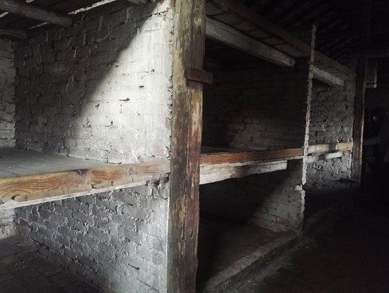 Krakow Auschwitz - Tours: Per non dimenticare...