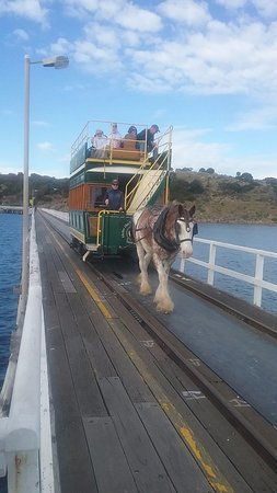 Victor Harbor Horse Drawn Tram: This was not loaded like we saw.
