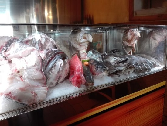 Vila Nogueira de Azeitao, Portugal: Linda montra de peixe de hoje.
