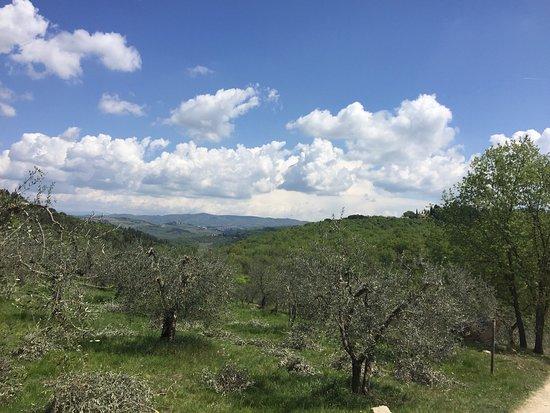 San Donato in Poggio, Itália: photo1.jpg