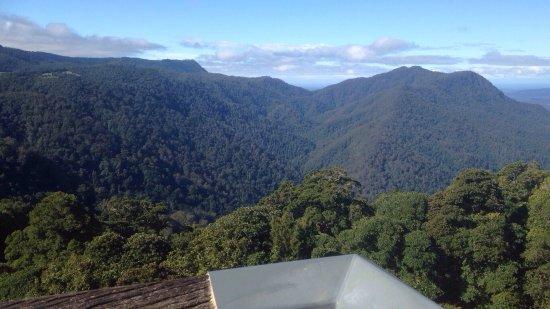 Dorrigo, Australien: photo0.jpg