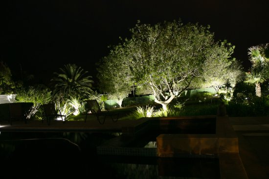 Bonnievale, South Africa: Garden by night