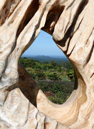 Maleny, Australien: Amazing Scenery