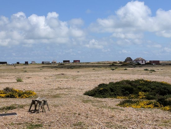 Dungeness, UK: IMG_20170520_130048_large.jpg