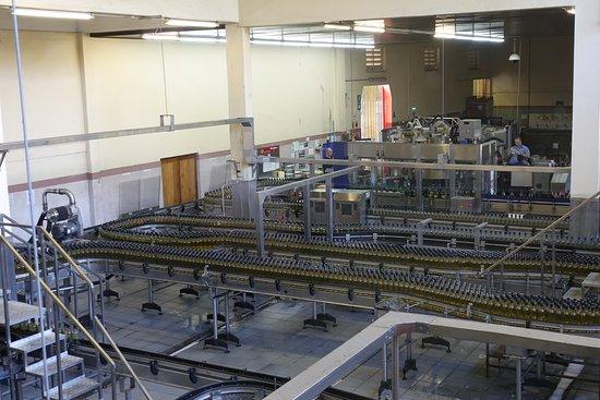 Bergkelder: wine manufacturing plant