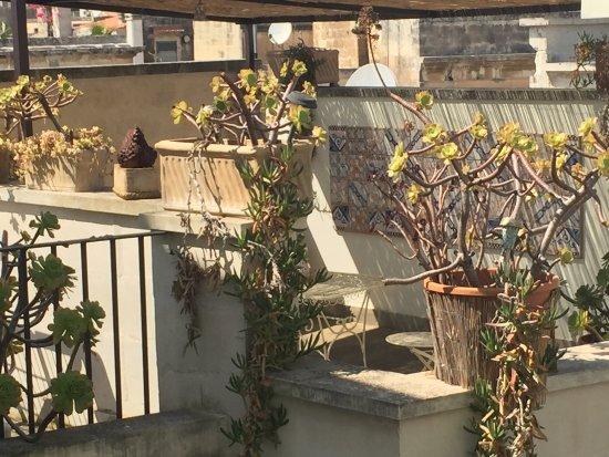 Terrazza Privata Ad Uso Esclusivo Picture Of Roof Barocco