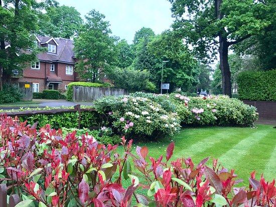 Horley, UK: photo0.jpg