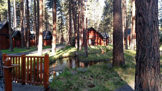 Five Pine Lodge & Spa: Cabins along a creek