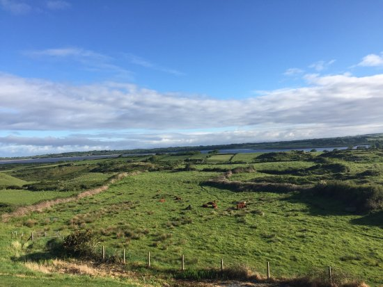Rosses Point, Irlanda: View from our bedroom window!!!