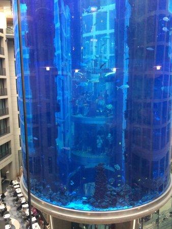 Restaurant HEat: Aquarium in the hotel