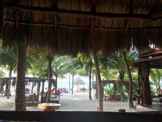 View from garisol sunflower room picture of holbox hotel casa las tortugas petit beach - Holbox hotel casa las tortugas ...