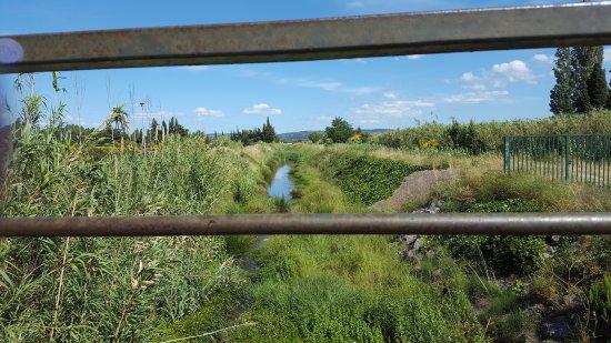 Piscine Espace De Liberte Du Grand Narbonne Photo De Piscine