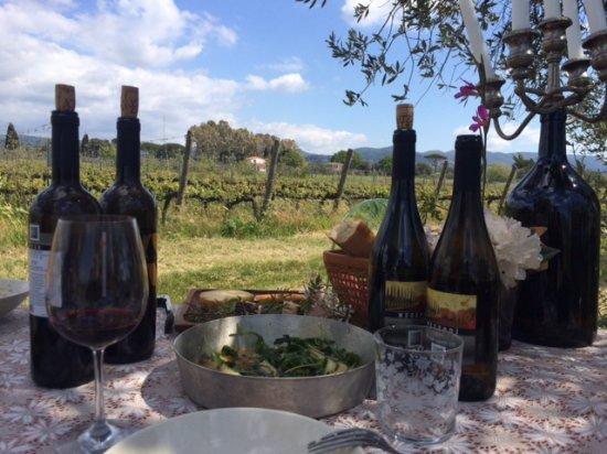 Castagneto Carducci, Ιταλία: pranzo in vigna