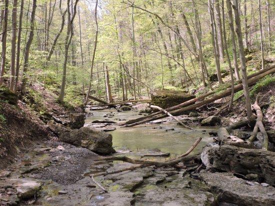 จอร์แดน, แคนาดา: 16 mile creek