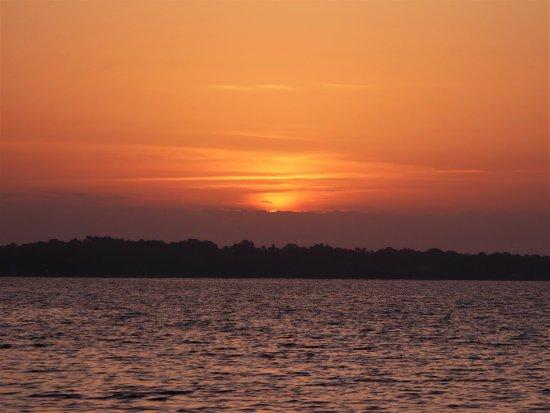 Leesburg, FL: Sunshine on my Shoulders