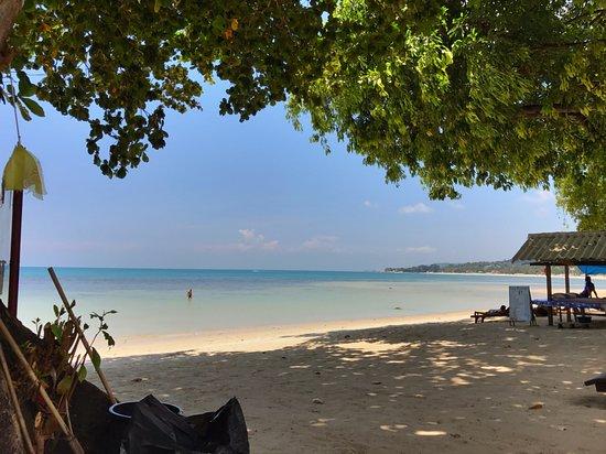 Seaview Paradise Resort Hotel: Beach