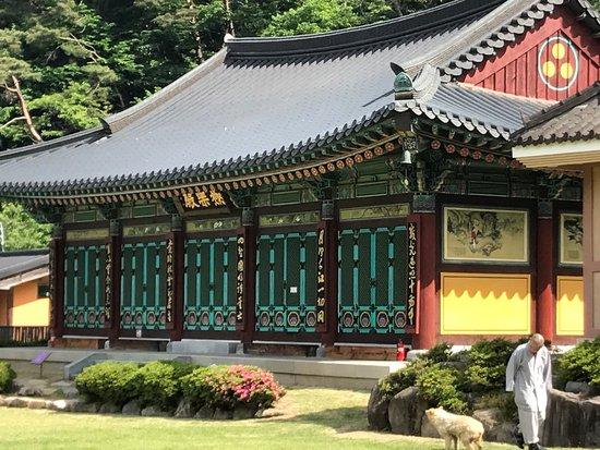 Gwangju, Güney Kore: photo4.jpg