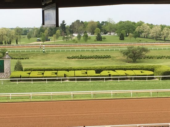 Keeneland: The bush says it all.