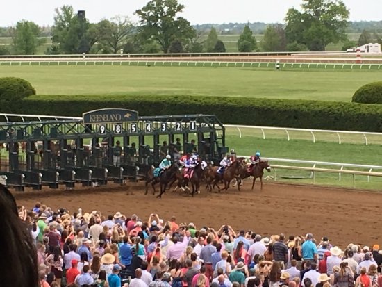 Keeneland: Great view from our seats in the grandstand.