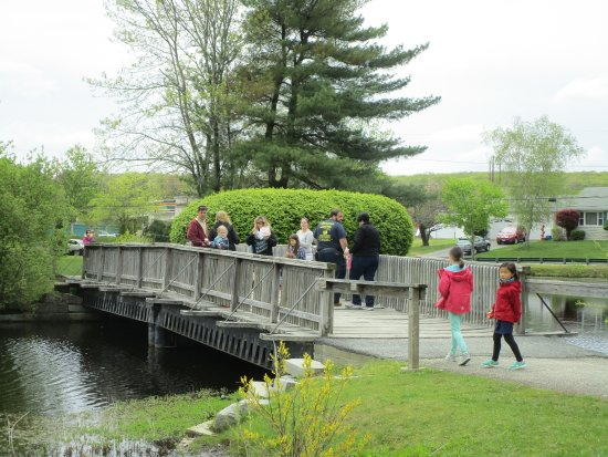 Johnston War Memorial Park