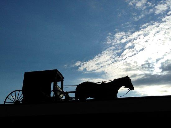Berlin, OH: Amish baggie