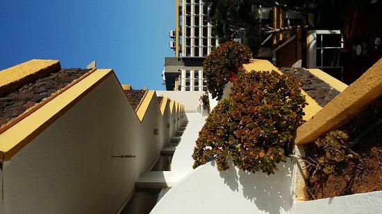 Hotasa Puerto Resort Bonanza Palace : Hotel and garden