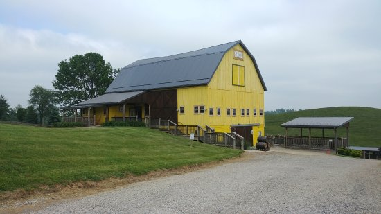 Newcomerstown, OH: Yellow Butterfly Winery