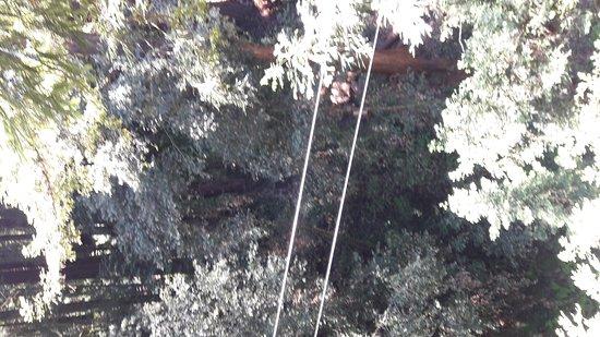 Mount Hermon, Kalifornien: 20170518_122000_large.jpg
