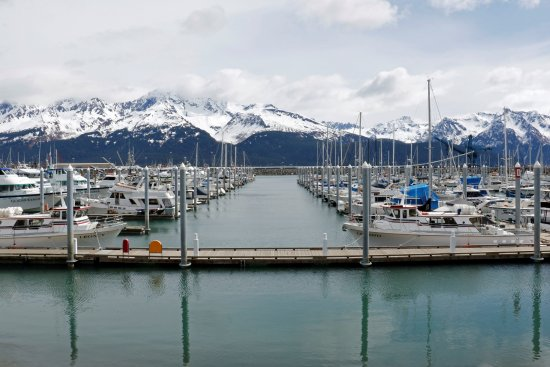 Millane's Serenity by the Sea Cabins: Seward Harbor
