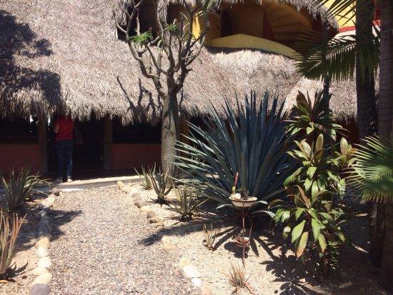 La Cruz de Huanacaxtle, Mexico: photo6.jpg