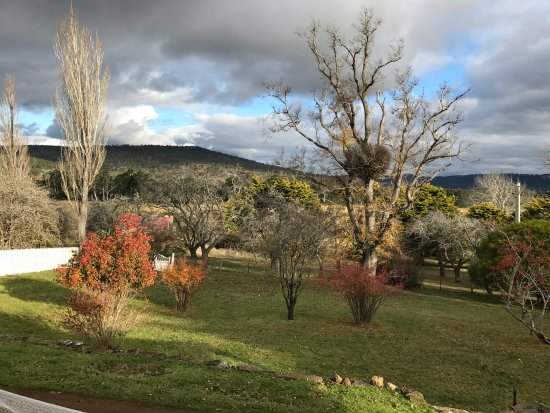 Buckland, Australia: One of the Autumn scenes we loved at Brockley