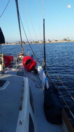 Marina del Rey, แคลิฟอร์เนีย: photo3.jpg