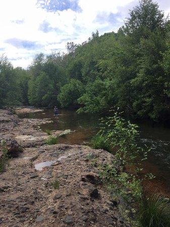 Cornville, อาริโซน่า: creek