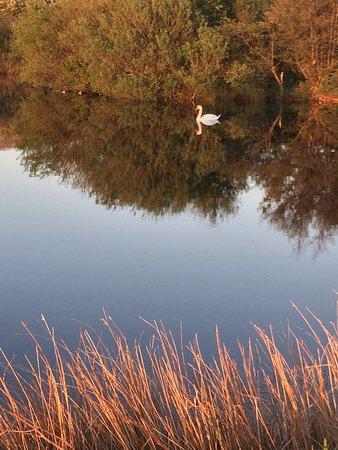 Blackwaterfoot, UK: photo0.jpg