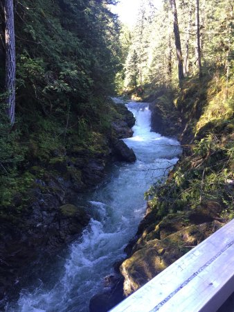 Little Qualicum Falls Provincial Park: photo2.jpg