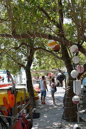 Lake Monroe, FL: Past the shops heading towards the docks.
