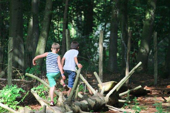 Skjern, Denmark: Balance, leg og læring