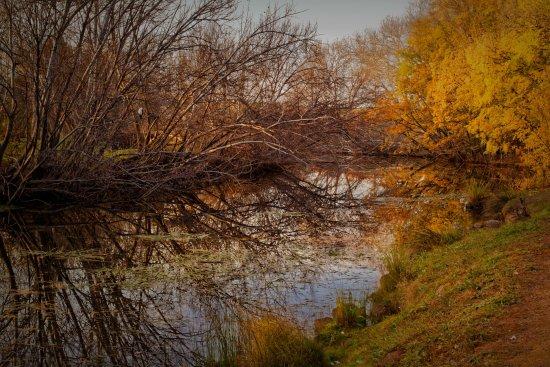Richmond, Australia: Early morning Coal River.