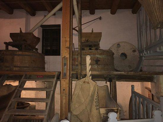 Villanova d'Asti, Italië: Fantastica cena !