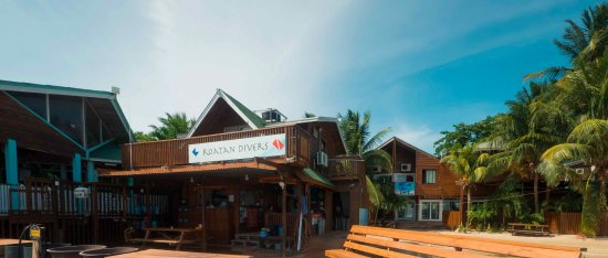 West End, Honduras: Roatan Divers from the dock