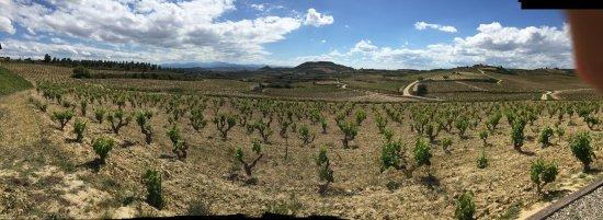 Villabuena de Alava, Spanyol: photo0.jpg