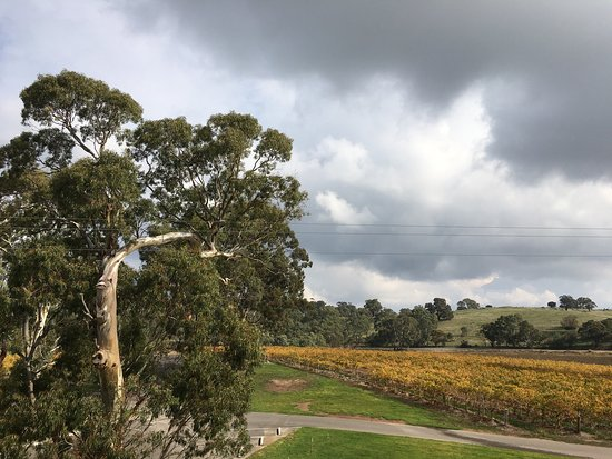 Angaston, Australia: photo2.jpg