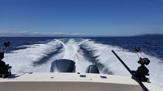 D and D Fishing Charters: photo0.jpg