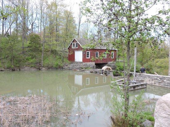 St. Catharines, Canada: Morningstar Mill
