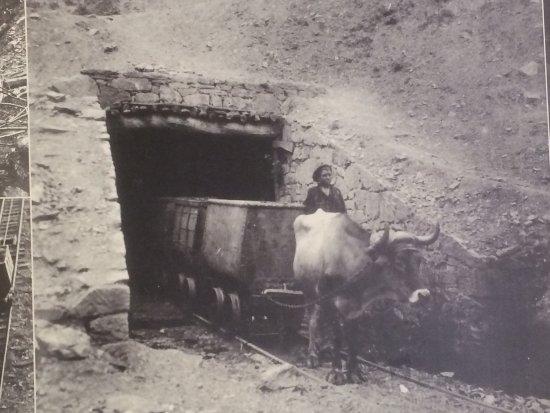 Restauranger i Langreo